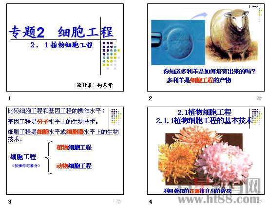 《植物细胞工程》ppt3