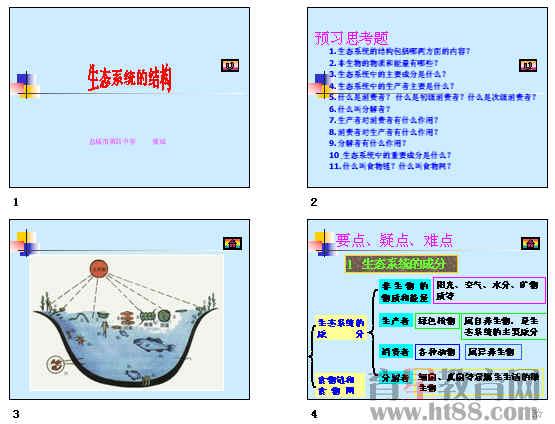 生态系统的结构ppt11 人教课标版