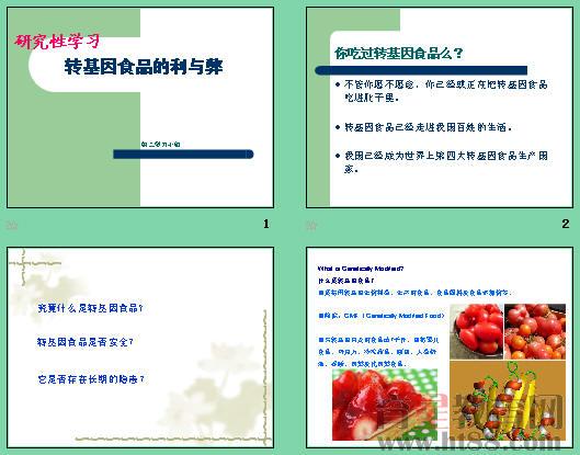 食品安全组织结构图