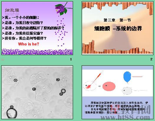 本课件包括体验制备细胞膜的方法