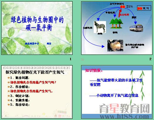 研究生物的结构,功能,发生和发展的规律.