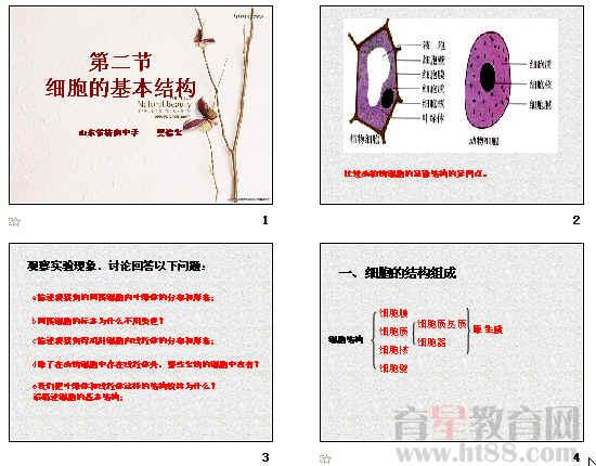 细胞的基本结构ppt12 人教课标版