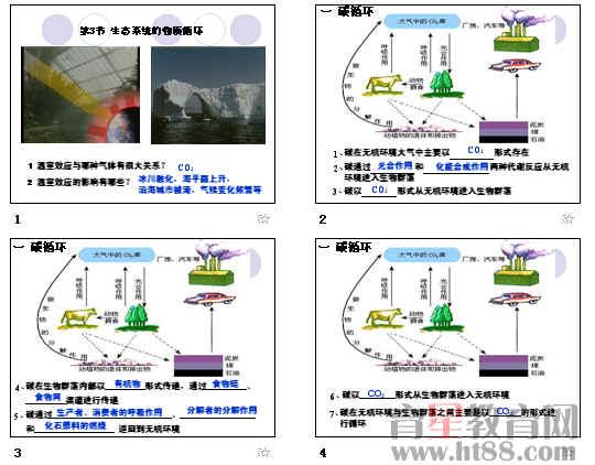 生态系统的物质循环ppt5