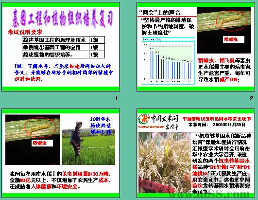 基因工程和植物组织培养ppt