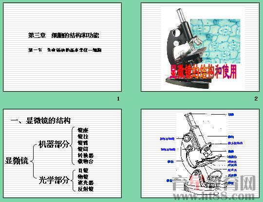 《显微镜的结构和使用》ppt2