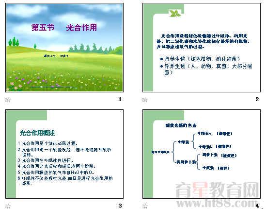 光合作用ppt36 人教课标版
