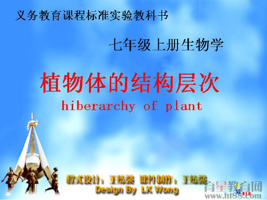 植物体的结构层次flash课件
