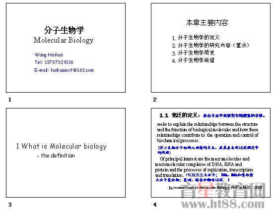 分子生物学ppt