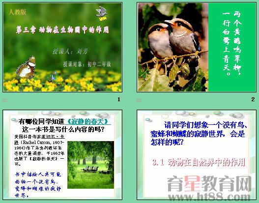 介绍了生态平衡及动物在生态平衡中的重要作用
