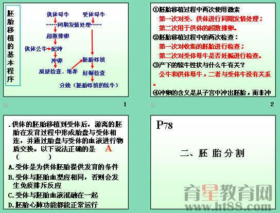 胚胎工程的应用及前景ppt14