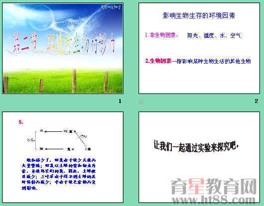 环境对生物的影响ppt15