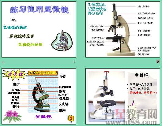 课件讲述了显微镜的构造