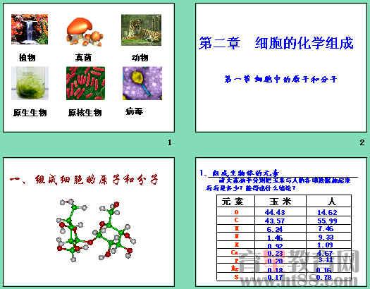 组成细胞的原子和分子ppt