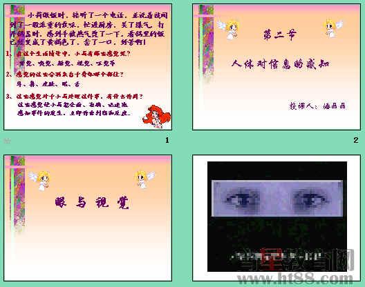 课件讲述了眼睛的结构和功能