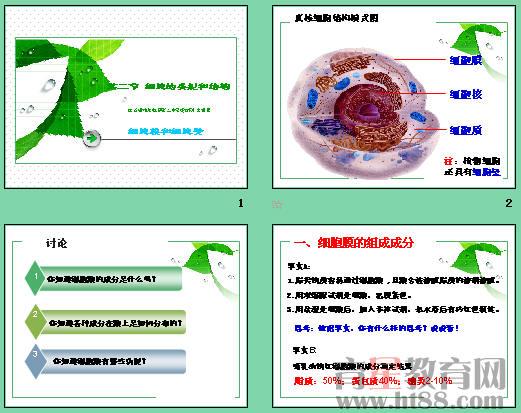 细胞的结构和功能答:细胞的结构和功能:1,细胞壁分类在细菌,真菌,植物