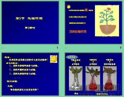 木本植物茎的结构,水分,无机盐和有机物的运输,比较了导管和筛管区别.