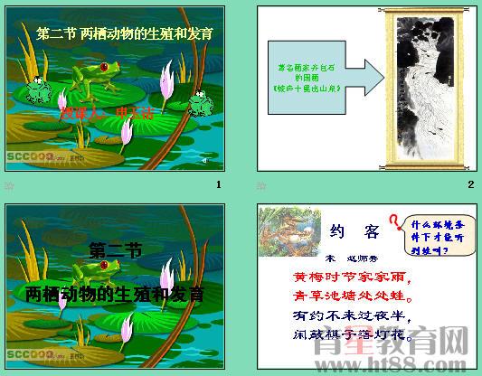 鳞,甲等覆盖)是两栖动物身体的特征而卵生,变态是两栖动物在繁殖和
