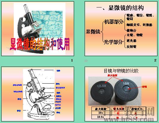 显微镜的结构和使用ppt3