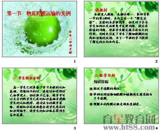植物细胞结构动画