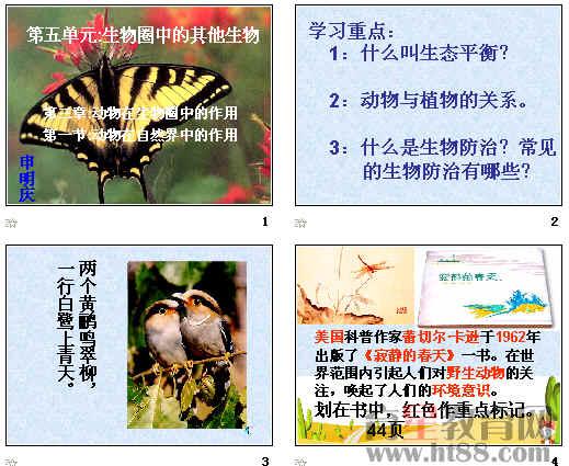 本课件从生态平衡,实例分析了动物在生态平衡中的