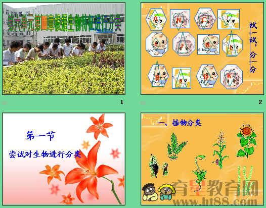 讲述了植物和动物分类的依据
