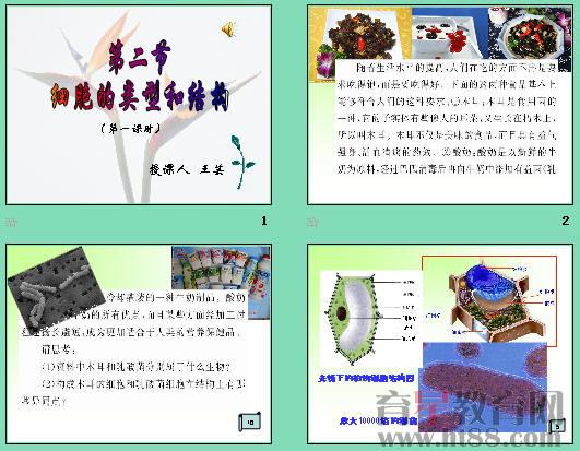 课件讲述了细胞的类型包括原核细胞和真核细胞