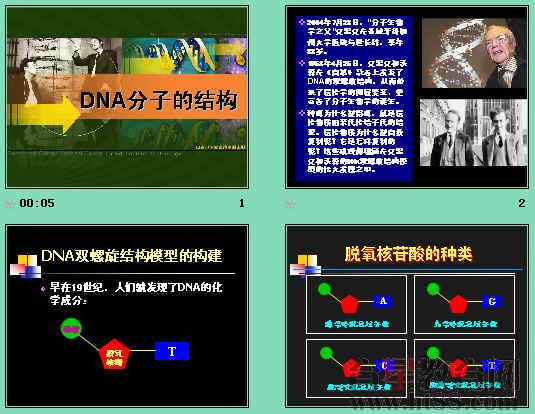 通过分析dna的空间结构