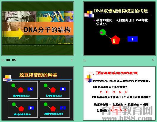 课件讲述了dna双螺旋结构模型的构建