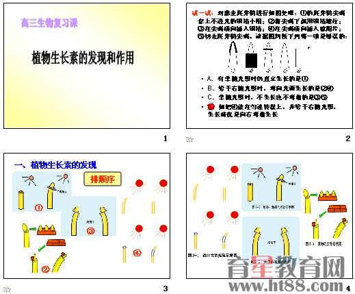 高三复习课植物生长素的发现和作用ppt