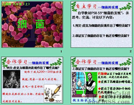 讲述了细菌的发现,细菌的形态和结构及细菌的生殖