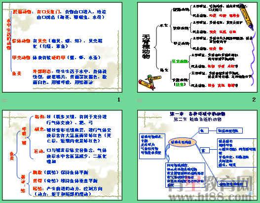 八年级上册生物人教版复习资料答:第五单元第一章动物的主要类群1,腔