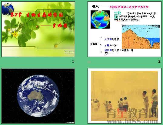 课件讲述了生态系统的组成