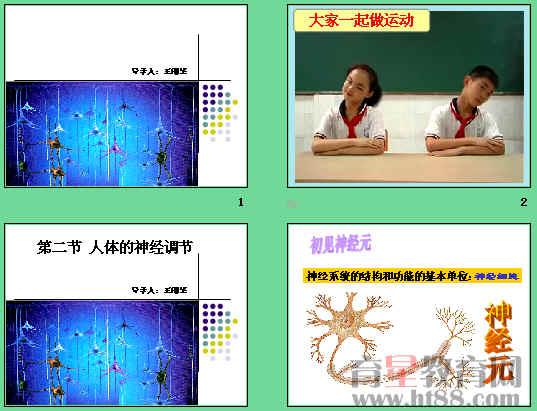 课件讲述了神经元的结构