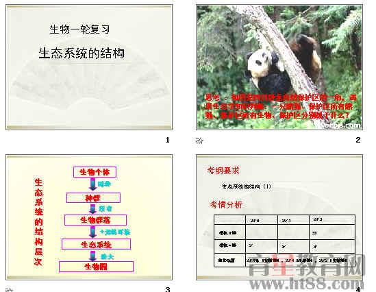 生态系统的结构ppt66(4份打包)