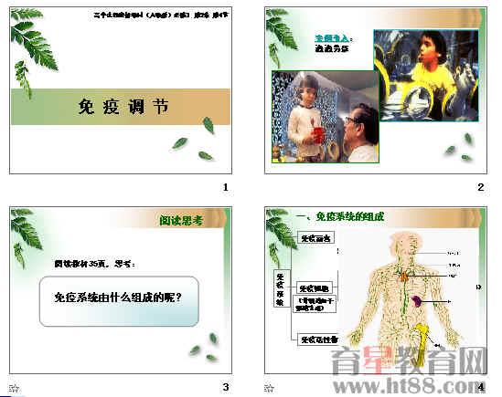 《免疫调节》ppt96(5份打包)