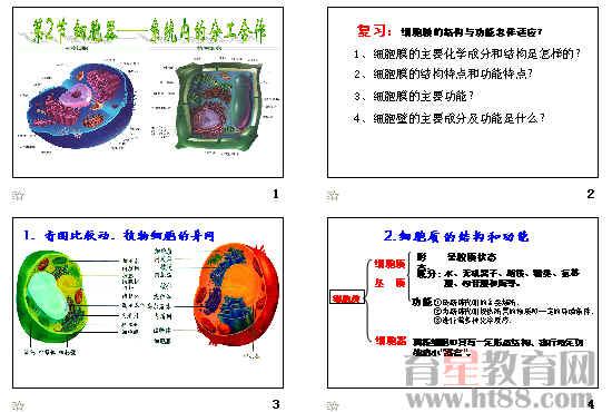 (5)教师分别播放动植物细胞亚细微结构模式图