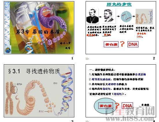 DNA是主要的遗传物质 34张ppt.ppt 3.32 MB DNA是主要的遗传物质 教学设计.doc 38.50 KB 赫尔希实验(A组)_标清.flv.mp4.mp4 1.21 MB 赫尔希实验(B组)_标清.flv.mp4.mp4 1.26 MB 噬菌体侵染细菌实验_标清.