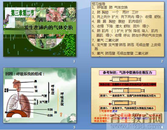 《发生在肺内的气体交换》ppt34